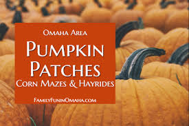 Roca Pumpkin Patch Lincoln by Omaha Area Pumpkin Patches Family Fun In Omaha