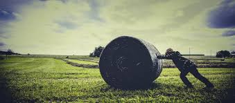On Coyotes And Hay Bales – The Coil – Medium Top Country Wedding Songs Gac The Hay Is Baled Eden Hills Passionettes And Albany State Band Fight Songhay In The Middle Hauling Hay 1950s Farm Scenes Pinterest Bethunecookman University Lets Go Wildcatshay In Hd Youtube Haystack Lounge Decor My Wife Yvette Decor Best 25 Barn Party Decorations Ideas On Wedding Environmental Art Archives Schuylkill Center For Mchs Presidents Page Miller County Museum Historical Society Just Me June 2013 Pating Unique Bale Of Bales Straw
