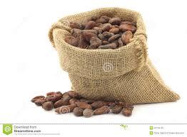 Cocoa Bean Clipart Dry 8