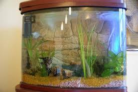 large aquarium rocks for sale large fish tank ornaments decorations mince his words