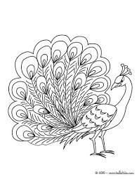 Peacock Coloring Page Color Online Print
