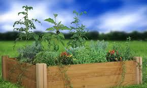 gronomics raised garden bed groupon goods