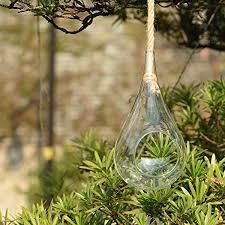 glasvasen hängend wand hängen glas vase für pflanzen blumen wohnzimmer wand dekor transparent kegelglas glasvase höhe 28cm