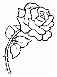 Rose Coloring Pages To Print