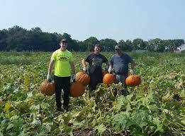 Pumpkin Patch Green Bay Wi by Chase Farms Market