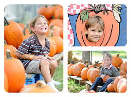 Pumpkin Patch Naples Fl by Mick Luvin Photography Swfl Pumpkin Patches