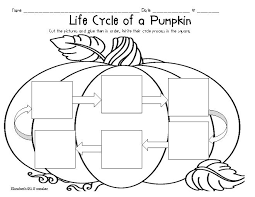Life Cycle Of A Pumpkin Seed Worksheet by Life Cycle Of A Pumpkin Worksheet Worksheets Releaseboard Free