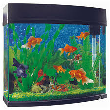 Star Wars Fish Tank Decorations by Fish Tanks Snacks Cleaning U0026 Pets Big W