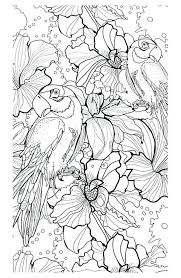 Free Download Coloring Pages Adults Animal Printable For No Downloading