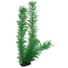 plante artificielle pour aquarium hobby egeria 34cm plante artificielle pour aquarium décorations