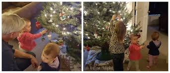 Berenstain Bears Christmas Tree Dvd by 2015
