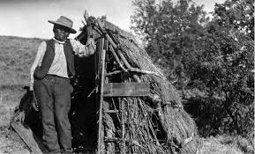 Boy Scout Christmas Tree Recycling San Diego by A Plea For Justice Cupeño Indians Versus Homesteaders In 1880s