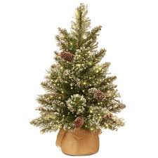 National Tree Company 2 Ft Glittery Bristle Pine Artificial Christmas With InfinityTM