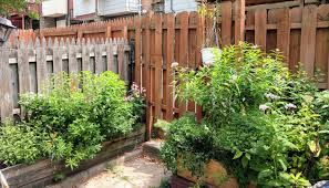Urban Gardening | Backyardsfornature.org Urban Backyard Design Ideas Back Yard On A Budget Tikspor Backyards Winsome Fniture Small But Beautiful Oasis Youtube Triyaecom Tiny Various Design Urban Backyard Landscape Bathroom 72018 Home Decor Chicken Coops In Coop Wasatch Community Gardens Salt Lake City Utah 2018 Bright Modern With Fire Pit Area 4 Yards Big Designs Diy Home Landscape Fleagorcom Our Half Way Through Urnbackyard Mini Farm Goats Chickens My Patio Garden Tour Blog Hop