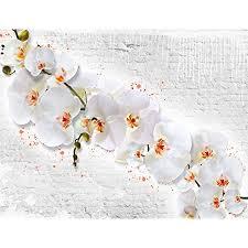 fototapete blumen orchidee steinwand 352 x 250 cm vlies tapeten wandtapete moderne wanddeko wohnzimmer schlafzimmer büro flur weiss gelb 9323011a