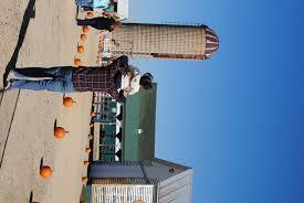 Lodi Pumpkin Patch by Eugsters Farm Market Corporate Events Picnics
