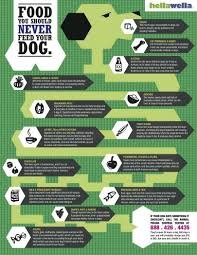Too Much Pumpkin For Dogs Diarrhea by Pancreatitis In Dogs What Causes It Home Treatments Overview