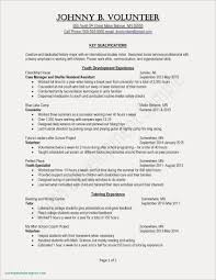 Resume Examples Personal Interests Awesome Beautiful Grapher Hobbies And Interest