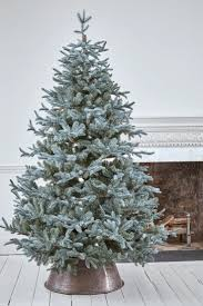 Dunhill Fir Christmas Trees by Best 25 7ft Christmas Tree Ideas Only On Pinterest Diy