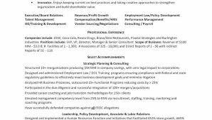 Business Analyst Resume Sample Fresh Templates Businesslyst Format Doc India Cv Re Superb