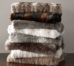 Check out the PB Faux Fur Throw with some FREE shipping on the
