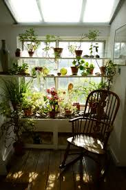 Shelf Good Window Sill Plant Shelf With Hanging Glass Rack At