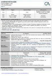 Professional Curriculum Vitae Sample Template One Page Of A Chartered Accountant CA Experience Resume