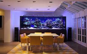 Huge Home #aquarium | Аквариумы и рыбы | Pinterest | Aquariums ... Amazing Aquarium Designs For Your Comfortable Home Interior Plan 20 Design Ideas For House Goadesigncom Beautiful And Awesome Aquariums Cuisine Small See Here Styfisher Best Stands Something Other Than Wood Archive How To In Photo Good Depot Kitchen Cabinet Sale 12 To Home Aquarium Custom Bespoke Designer Fish Tanks Perfect Modern Living Room Lighting 69 On Great Remodeling Office 83 Design Simple Trending Colors X12 Tiles Bathroom 90