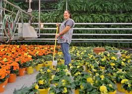 How Petitti Garden Center has grown By the numbers