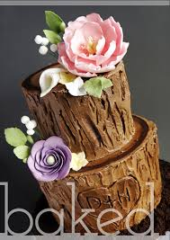 Rustic Tree Stump Wedding Cake