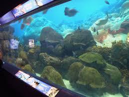 FGBNMS Zoo and Aquarium Partners