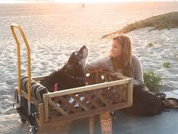 Ike s Mom Donates Custom Built Home Depot Wagon to Another Dog
