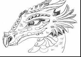 Stunning Dragon Face Coloring Pages For Adults With How To Train Your And
