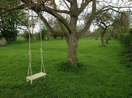 Traditional Garden Tree Swing: 6 Steps Outdoor Play With Wooden Climbing Frames Forts Swings For Trees In Backyard Backyard Swings For Great Times Chads Workshop Swing Between 2 27 Stunning Pallet Fniture Ideas Youll Love Beautiful Courtyard Garden Swing Love The Circular Stone Landscaping Playful Kids Tree Garden Best 25 Small Sets Ideas On Pinterest Outdoor Luxury Trees In Architecturenice Round Shaped And Yellow Color Used One Rope Haing On Make A Fun Ground Sprinkler Out Of Pvc Pipes A Creative Summer