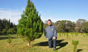 Mark Cameron Next To One Of The Many Great Real Christmas Trees