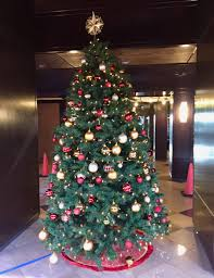 WHAT TO DO WITH YOUR CHRISTMAS TREES AT THE CHARTER CLUB In MIAMI