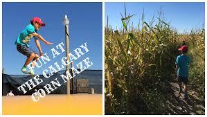 Devine Pumpkin Patch Harrodsburg Ky by Calgary Corn Maze Fun Farm