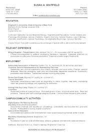 Resume Headline Examples For Experienced And Create Cool Fresher Software