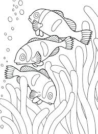 Coloring Pages Of Sea Animals Clown Fish