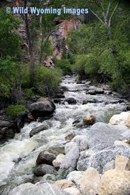 Sinks Canyon Wy Weather by 10 Best Buffalo Wyoming Images On Pinterest Buffalo Wyoming