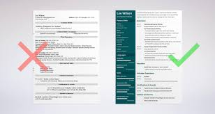Painter Resume Sample Complete Guide 20 Examples Pdf S