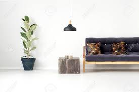 schwarze le über metalltisch zwischen holzbank mit braunen kissen und ficus im wohnzimmer interieur