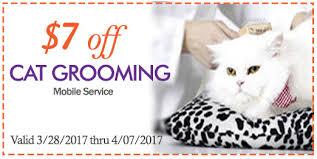 mobile cat grooming mobile pet grooming honey pets