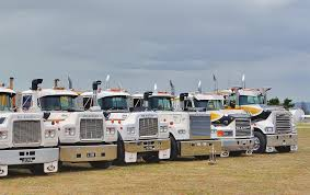 NZ Trucking. Blossom Festival Bursts Out Of Winter's Gloom