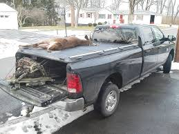 Whitetail Deer On Heavy-Duty Truck Bed Cover On Ram Pickup… | Flickr Truck Bed Covers Driven Sound And Security Marquette Best Buy In 2017 Youtube Pickup Trucks 101 How To Choose The Right Cover Carmudi Access Lomax Hard Trifold Sharptruckcom Peragon Retractable Alinum Review Weathertech Roll Up Honda Ridgeline Luxury New 2019 Rtl Highway Products Inc Northwest Accsories Portland Or Bak Industries 39102 Revolver X2 Rolling Retrax Sales Installation