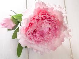 Zuckerblumen Selber Spritzen Anleitung Was Anleitung Einfache Pfingstrose Aus Blütenpaste Offen