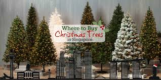 Christmas Tree Types Artificial by Where To Buy Christmas Trees U0026 Decorations In Singapore