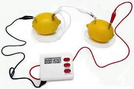 if you lemons make a battery carolina