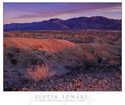 Earth Floor Biomes Desert by Blog U2014 Lowery Landscapes