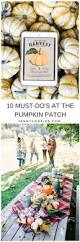 Seattle Pumpkin Patch For Adults by Blog U2013 Original Jenny Cookies